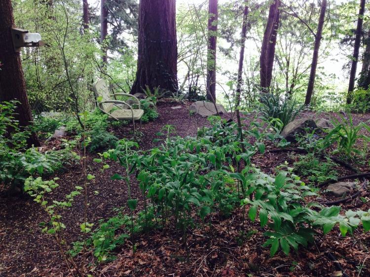 Jocelyn's Memorial Garden