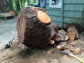 And the stump has been wrenched from its last earthly tether. Sad but, well, good.